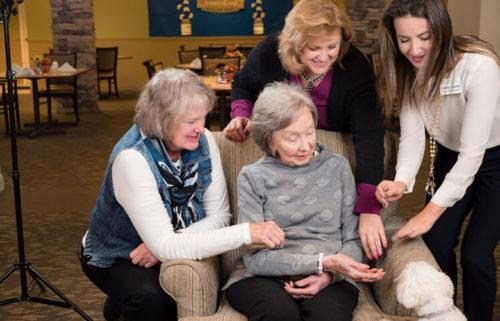 Doggies for Dementia Foundation Blog