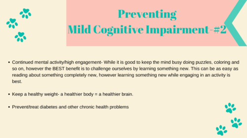 Preventing Dementia and MCI