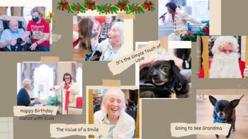 Doggies for Dementia-Pecan ridge Blog